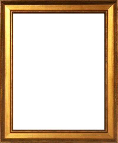 aris gold 8x10 loading